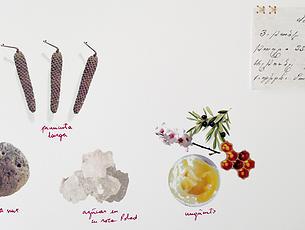 Silvina Der-Meguerditchian, Treasures, 2015
